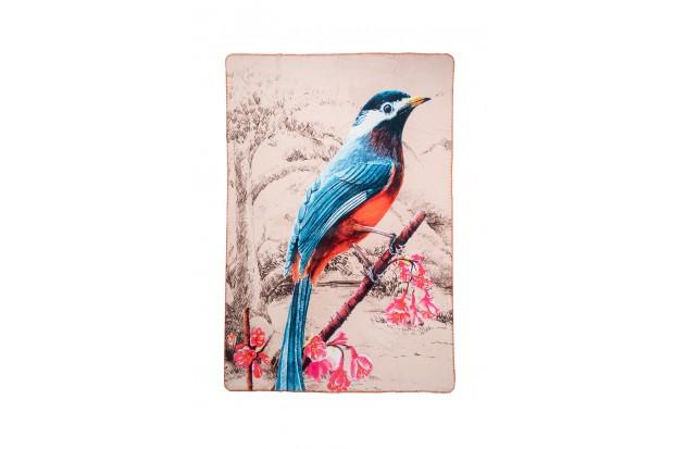 Blue Bird in Paradise